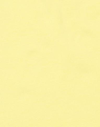 女款闪粉字母印图浅黄色短袖t恤