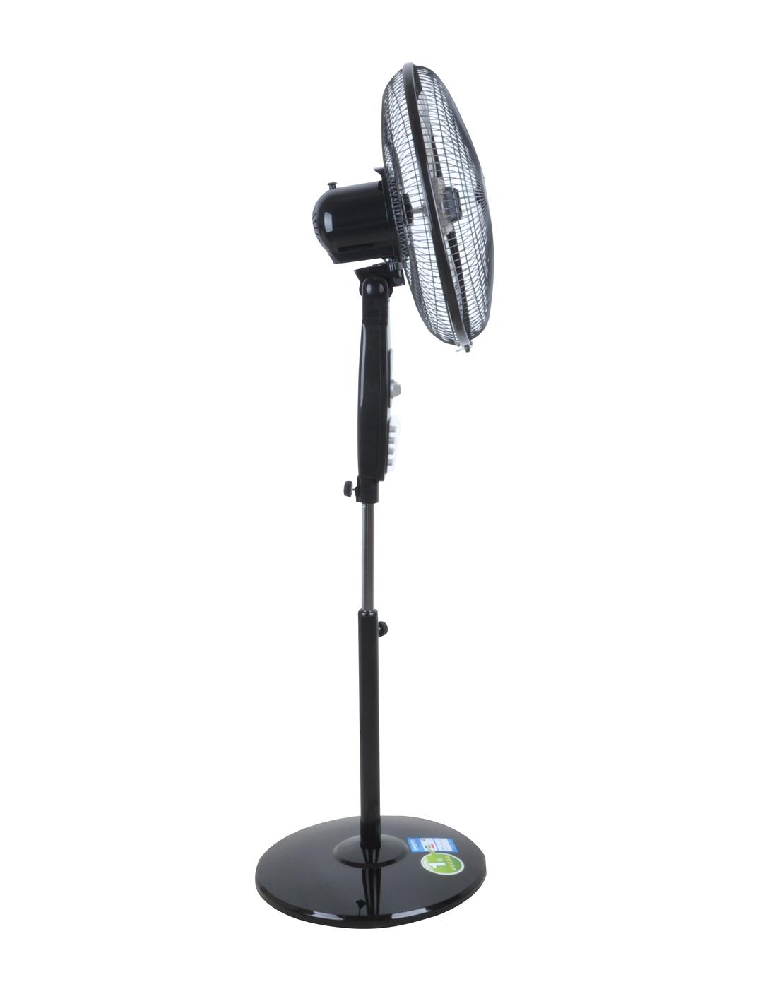 电风扇 家用摇头落地扇 定时风扇