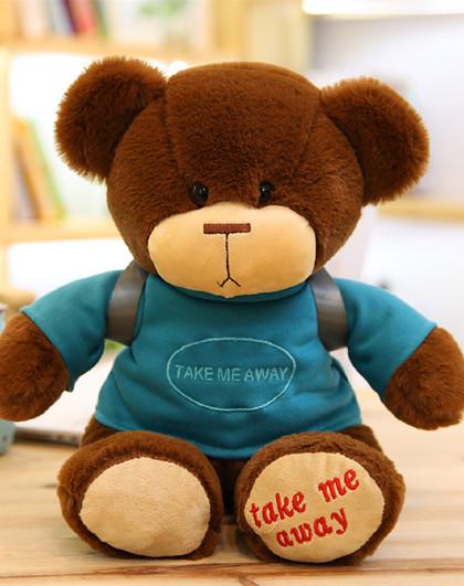爱冰清 可爱小熊公仔穿衣服背包毛绒玩具毛毛熊泰迪熊布娃娃