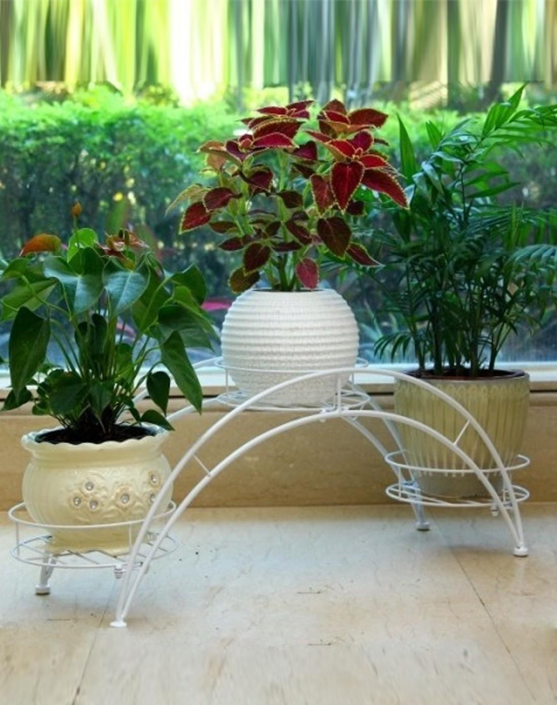 三花盆拱桥欧式典雅花架,添上绿植点缀家