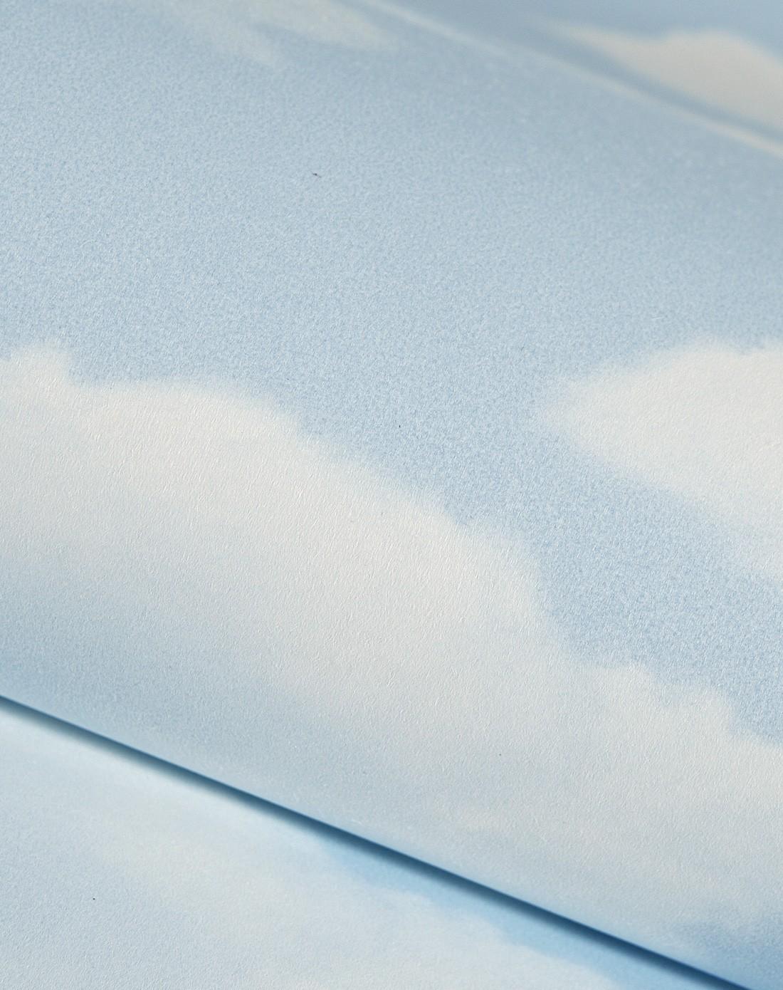 纸尚美学墙纸专场 > 天蓝色儿童房蓝色天空环保无纺布壁纸