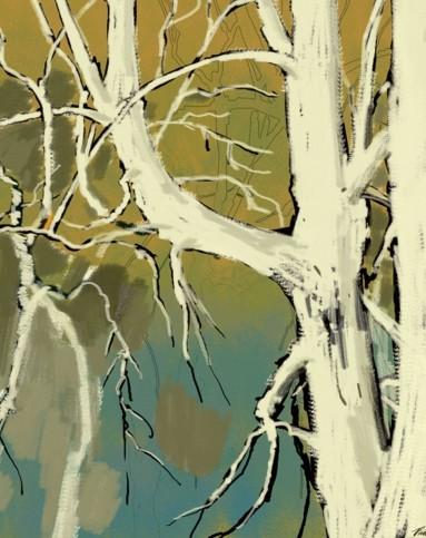 抽象桦树装饰画现代简约50x50