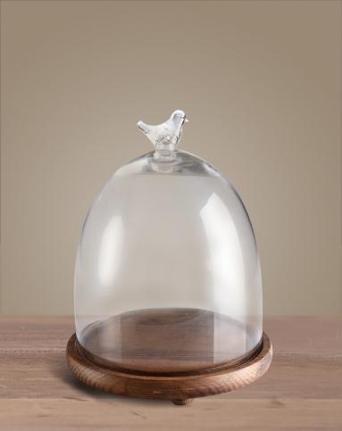 小鸟透明实木底座玻璃罩(特大号)
